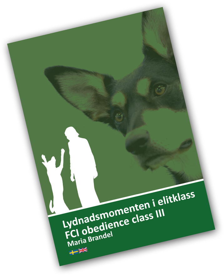 fci_obedience_classIII