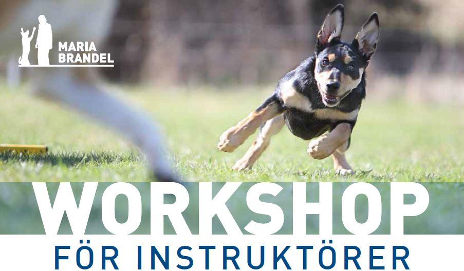 workshop_instruktorer